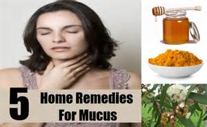 home remedies for mucus effective home remedies for mucus treatments