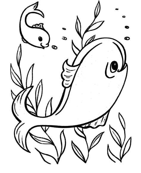free coloring pages fish ocean easy coloring pages ocean fish coloring pages