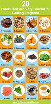 20 foods that are very crucial for getting pregnant
