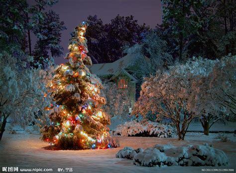 圣诞树圣诞夜景摄影图 节日庆祝 文化艺术 摄影图库 昵图网nipic com