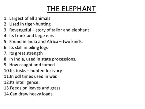 Essay About Elephant by To Sum Up How To Write Essay Writing