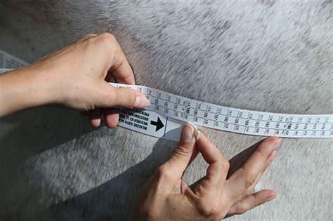 weight management tools weight management tools