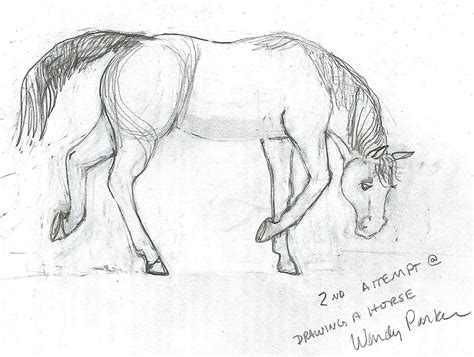 Nice Hourse by The Midnight Library How To Draw A Horse The Short Version