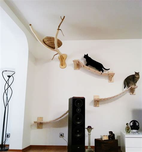 Cat Wall Furniture by Rooms Turned Into Cat Playgrounds By Goldtatze