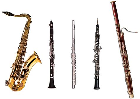 wind section instruments woodwind instrument