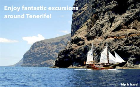 boat hire tenerife tenerife boat hire excursions make your reservations