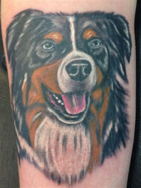 australian shepherd tattoo silloute australian shepherd pictures to pin on