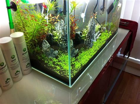 Besta Aquarium by Ikea Besta Stand The Planted Tank Forum