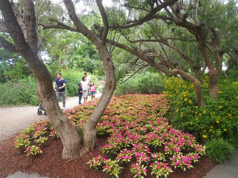 Dallas Arboretum And Botanical Gardens Gardens Been There Seen That