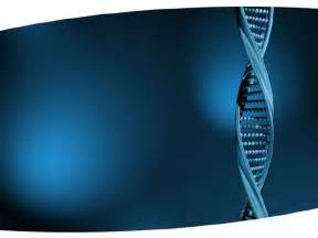 What Is A Template In Dna by Dna Structure Design Template