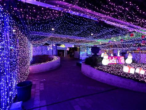 america christmas light set up australia brightens with record setting lights display abc news