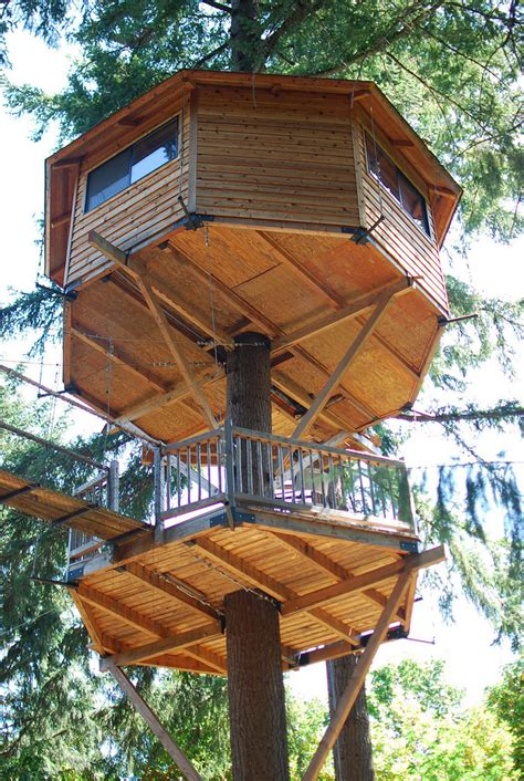 oregon treehouse resort   unforgettable experience