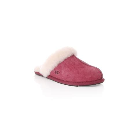 next slippers uk ugg womens ugg australia scuffette ii water resistant