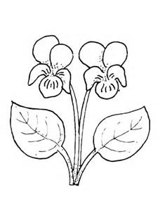 coloring page of violet flower violet flower coloring page supercoloring com