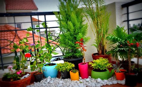 ideas for small balcony gardens small space gardening 20 clever ideas to grow in a