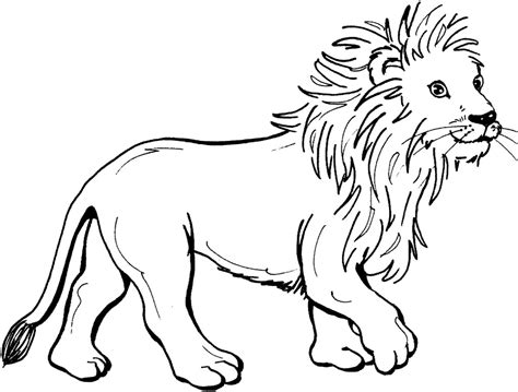 lion coloring page free coloring lion for kids coloring pages lion coloring pages
