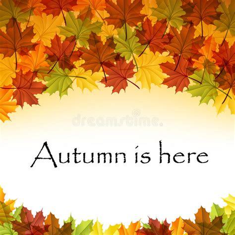 cornici autunno cornice di testo delle foglie di autunno env 10 immagini
