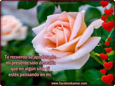 imagenes de flores bonitas para facebook hermosas flores facebook gallery