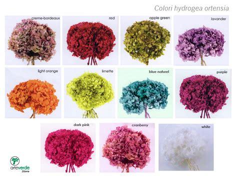 fiori stabilizzati prezzi fiori stabilizzati arteverde senigallia