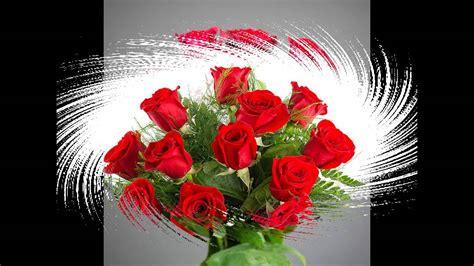 espectaculares imagenes de las flores mas lindas del mundo rosas rojas las m 193 s lindas del mundo productora kikito