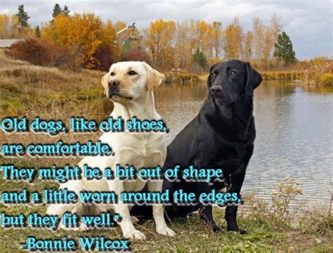 quotes about puppies inspirational quotes about dogs puppies with inspirational quote quotes