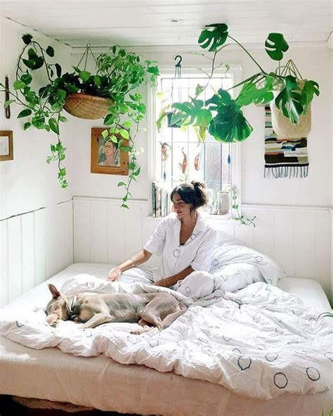 bedroom with plants 35 chic ways to rock plants in your interiors digsdigs