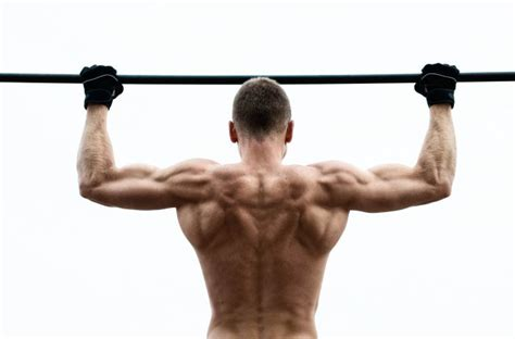 Rack Pull Benefits by 6 Benefits Of Pull Ups