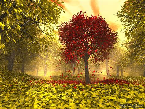 fall autumn autumn rosanne bittner