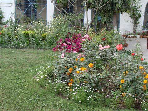 Indian Flower Garden India Garden Butterfly Garden