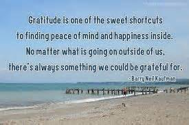 the gratitude journal for find happiness and peace in 5 minutes a day books gratitude is one of the sweet shortcuts to finding peace