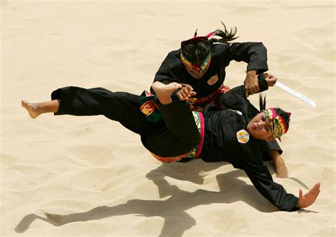 martial arts silat harimau the deadly beauty 7 deadliest martial arts make you able to kill someone