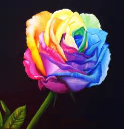 Thesaurus Vanity Rainbow Rose Recolored By Angelskissme Apps Directories