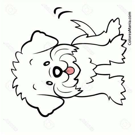 imagenes para colorear un perro colorear perro malts dibujo infantil animales domsticos