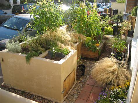 urban backyard urban vegetable gardening