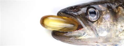 fish oil and perms fishoil method