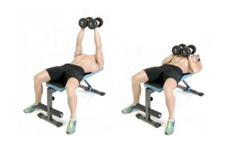 close grip bench press with dumbbells upwod n 186 11 the colossal chest workout chest triceps