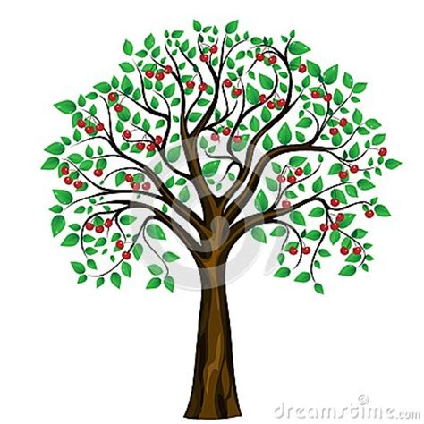 cherry tree vector vector abstract cherry tree on white background royalty free stock photos image 25214848