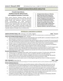 Executive Resume Example Resumes Social Media Profiles Amp Bios Archives Chameleon