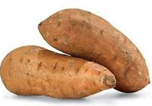 the lowly sweet potato ranks high as a super food the