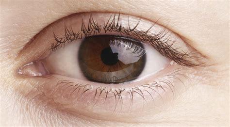 imagenes de ojos de jaguar 191 por qu 233 me tiembla el ojo blog de cl 237 nica baviera