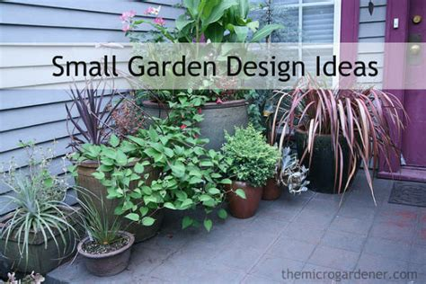 small garden plant ideas small garden design the micro gardener
