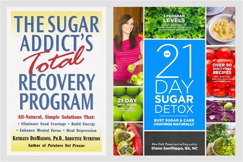 21 Day Brain Detox Book by 21 Day Diet Plan Book Thingsinter8r