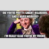 Willy Wonka Meme Funny | 480 x 268 jpeg 121kB