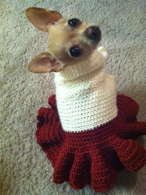 free crochet pattern for dog coats best 25 crochet dog clothes ideas on pinterest diy
