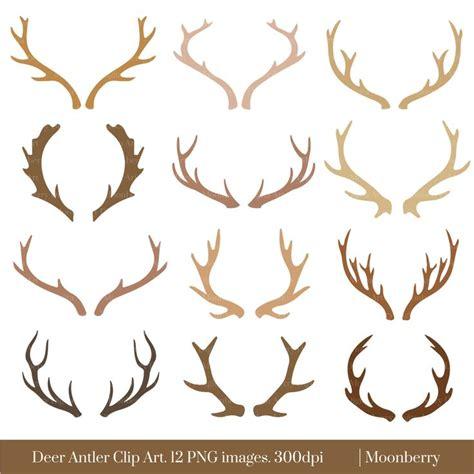 best 25 deer horns ideas on pinterest horn deer horns