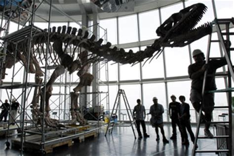 The Bone Adventure Backyard How Can Soft Tissue Exist In Dinosaur Fossils Howstuffworks