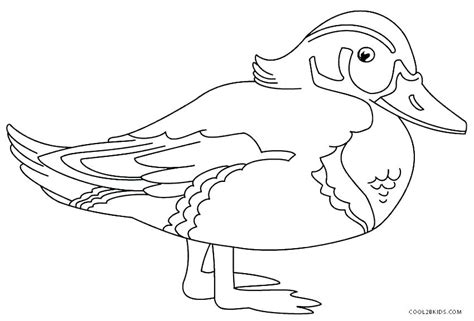 anaheim ducks coloring pages ducks coloring pages coloring page of a duck duck coloring