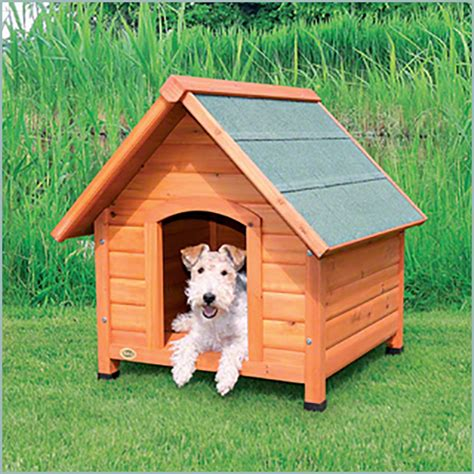 dog in the dog house dog house gallery weatherking private storage