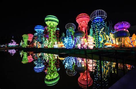 dubai garden glow opens its doors for the season