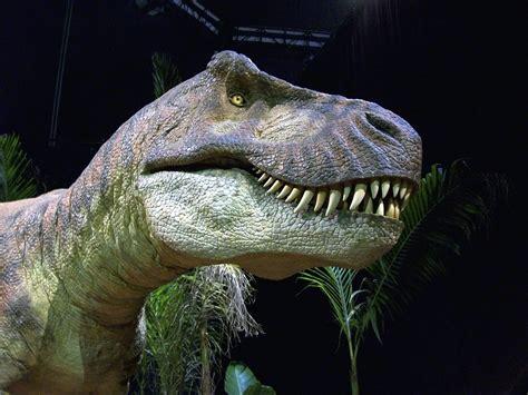 film dokumenter tentang dinosaurus ditemukan sepupu t rex yang memiliki sisi sensitif